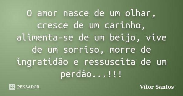 O amor nasce de um olhar, cresce de um carinho, alimenta-se de um beijo, vive de um sorriso, morre de ingratidão e ressuscita de um perdão...!!!... Frase de Vitor Santos.