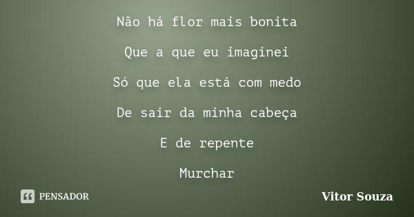 Não há flor mais bonita Que a que eu imaginei Só que ela está com medo De sair da minha cabeça E de repente Murchar... Frase de Vitor Souza.