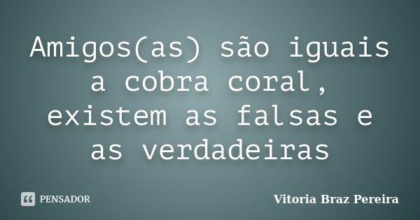 Amigos(as) são iguais a cobra coral, existem as falsas e as verdadeiras... Frase de Vitoria Braz Pereira.