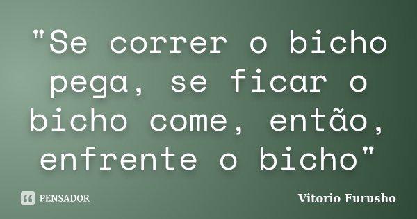 """""""Se correr o bicho pega, se ficar o bicho come, então, enfrente o bicho""""... Frase de Vitorio Furusho."""