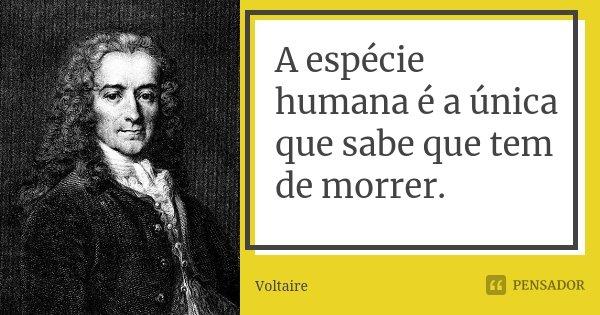 A espécie humana é a única que sabe que tem de morrer.... Frase de Voltaire.