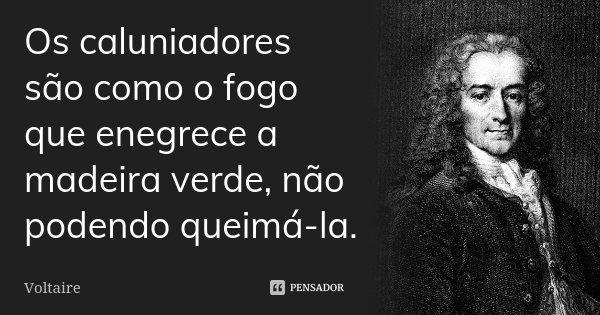 Os caluniadores são como o fogo que enegrece a madeira verde, não podendo queimá-la.... Frase de Voltaire.