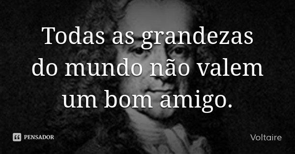 Todas as grandezas do mundo não valem um bom amigo.... Frase de Voltaire.