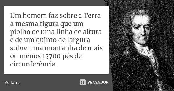 Um homem faz sobre a Terra a mesma figura que um piolho de uma linha de altura e de um quinto de largura sobre uma montanha de mais ou menos 15700 pés de circun... Frase de Voltaire.