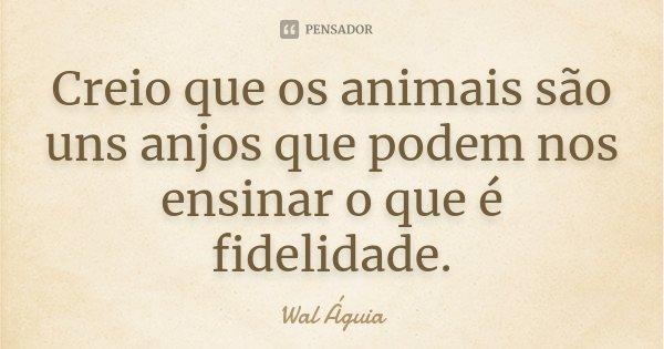 Creio que os animais são uns anjos que podem nos ensinar o que é fidelidade.... Frase de Wal Águia.