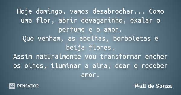 Hoje domingo, vamos desabrochar... Como uma flor, abrir devagarinho, exalar o perfume e o amor. Que venham, as abelhas, borboletas e beija flores. Assim natural... Frase de Wall de Souza.