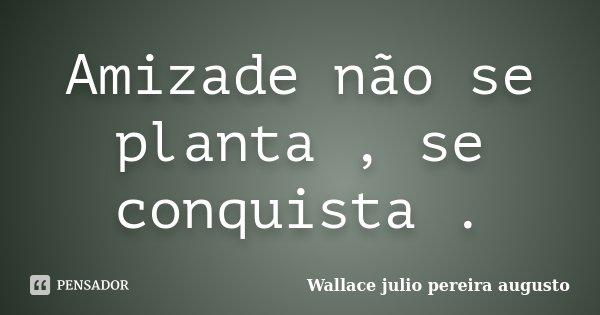 Amizade não se planta , se conquista .... Frase de Wallace Julio Pereira Augusto.