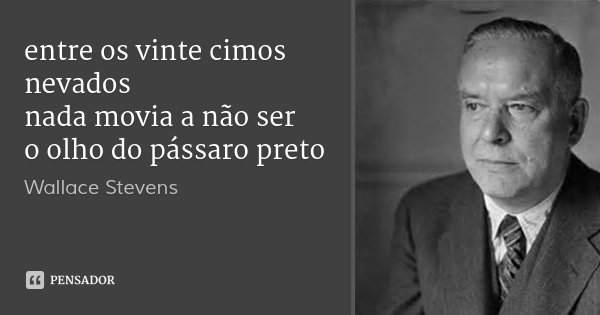 entre os vinte cimos nevados nada movia a não ser o olho do pássaro preto... Frase de Wallace Stevens.