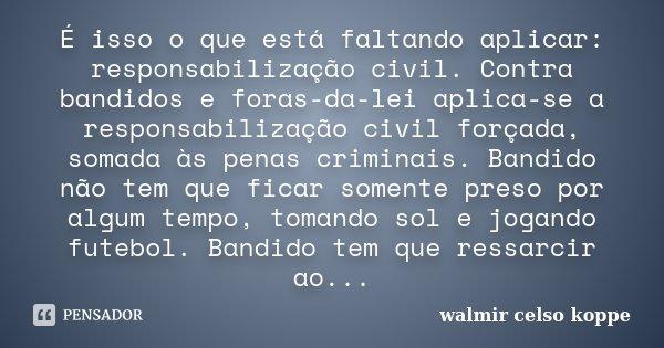 É isso o que está faltando aplicar: responsabilização civil. Contra bandidos e foras-da-lei aplica-se a responsabilização civil forçada, somada às penas crimina... Frase de Walmir Celso Koppe.