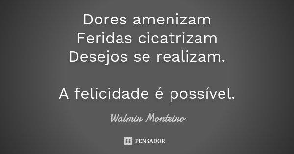 Dores amenizam Feridas cicatrizam Desejos se realizam. A felicidade é possível.... Frase de Walmir Monteiro.