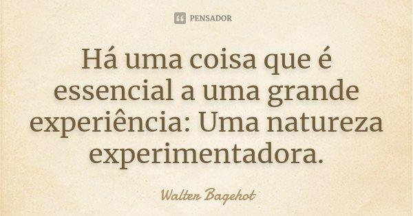 Há uma coisa que é essencial a uma grande experiência: Uma natureza experimentadora.... Frase de Walter Bagehot.