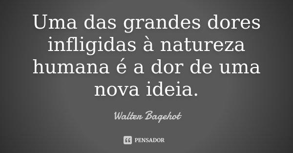 Uma das grandes dores infligidas à natureza humana é a dor de uma nova ideia.... Frase de Walter Bagehot.