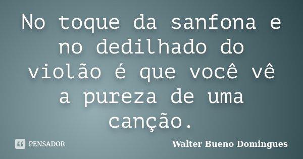 No Toque Da Sanfona E No Dedilhado Do Walter Bueno Domingues