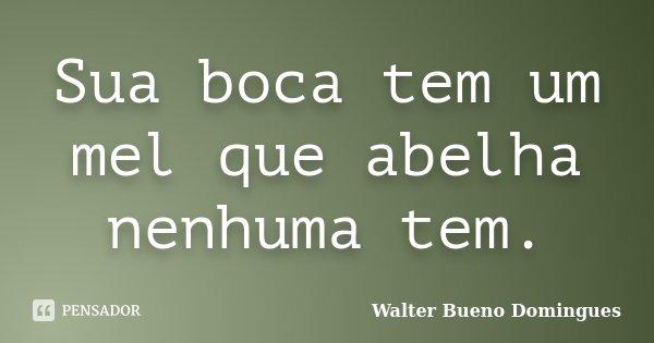 Sua boca tem um mel que abelha nenhuma tem.... Frase de Walter Bueno Domingues.
