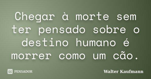 Chegar à morte sem ter pensado sobre o destino humano é morrer como um cão.... Frase de Walter Kaufmann.
