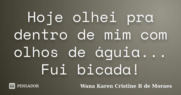 Hoje olhei pra dentro de mim com olhos de águia... Fui bicada!... Frase de Wana Karen Cristine B. de Moraes.