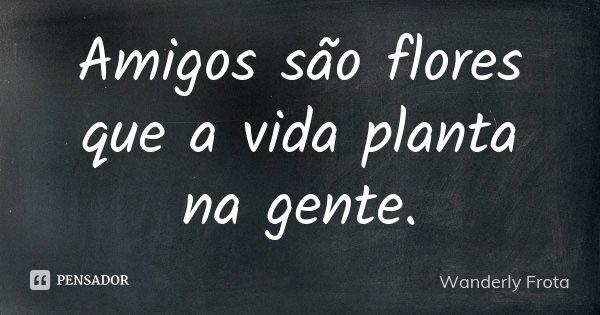 Amigos são flores que a vida planta na gente.... Frase de Wanderly Frota.