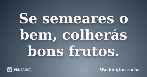 Se semeares o bem, colherás bons frutos.... Frase de Washington rocha.