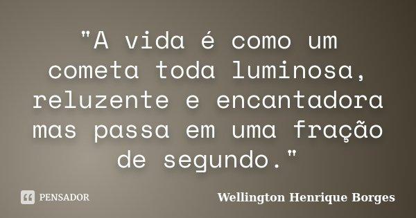 """""""A vida é como um cometa toda luminosa, reluzente e encantadora mas passa em uma fração de segundo.""""... Frase de Wellington Henrique Borges."""