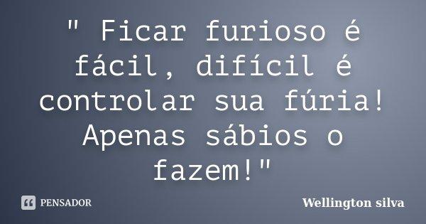 """"""" Ficar furioso é fácil, difícil é controlar sua fúria! Apenas sábios o fazem!""""... Frase de Wellington Silva."""