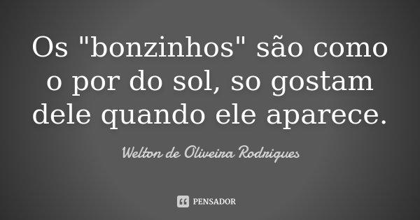 """Os """"bonzinhos"""" são como o por do sol, so gostam dele quando ele aparece.... Frase de Welton de Oliveira Rodrigues."""