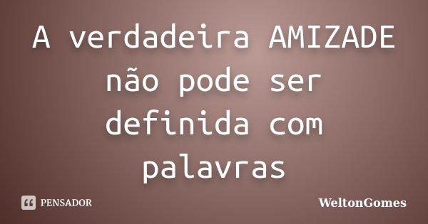 A verdadeira AMIZADE não pode ser definida com palavras... Frase de WeltonGomes.