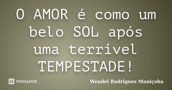 O AMOR é como um belo SOL após uma terrível TEMPESTADE!... Frase de Wendel Rodrigues Maniçoba.