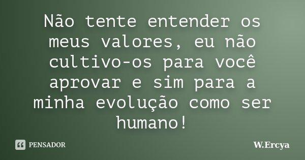 Não tente entender os meus valores, eu não cultivo-os para você aprovar e sim para a minha evolução como ser humano!... Frase de W.Ercya.
