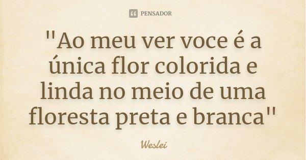 """""""Ao meu ver voce é a única flor colorida e linda no meio de uma floresta preta e branca""""... Frase de Weslei."""