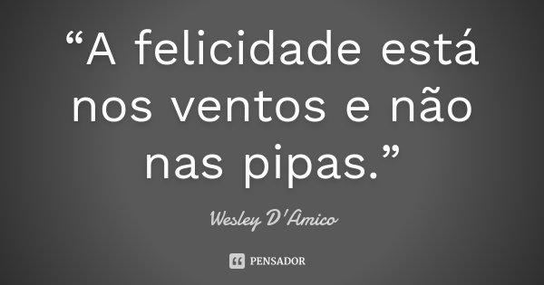 """""""A felicidade está nos ventos e não nas pipas.""""... Frase de Wesley D'Amico."""