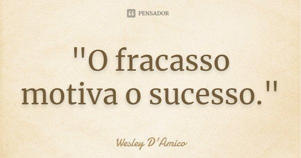 """""""O fracasso motiva o sucesso.""""... Frase de Wesley D'Amico."""