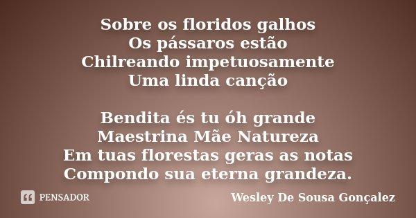 Sobre os floridos galhos Os pássaros estão Chilreando impetuosamente Uma linda canção Bendita és tu óh grande Maestrina Mãe Natureza Em tuas florestas geras as ... Frase de Wesley De Sousa Gonçalez.