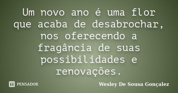 Um novo ano é uma flor que acaba de desabrochar, nos oferecendo a fragância de suas possibilidades e renovações.... Frase de Wesley De Sousa Gonçalez.