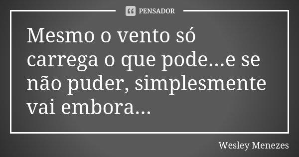 Mesmo o vento só carrega o que pode...e se não puder, simplesmente vai embora...... Frase de Wesley Menezes.