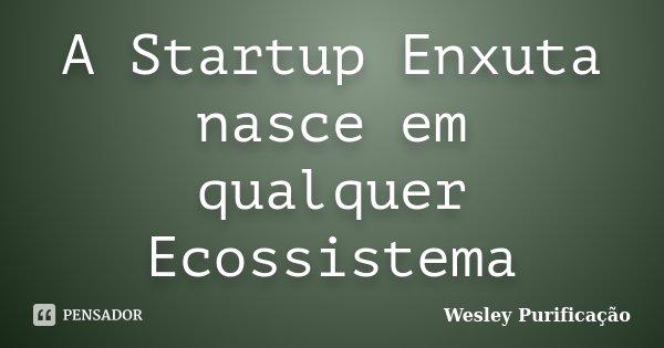 A Startup Enxuta nasce em qualquer Ecossistema... Frase de Wesley Purificação.