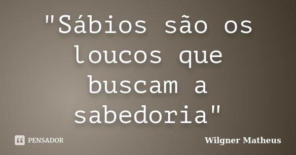 """""""Sábios são os loucos que buscam a sabedoria""""... Frase de Wilgner Matheus."""