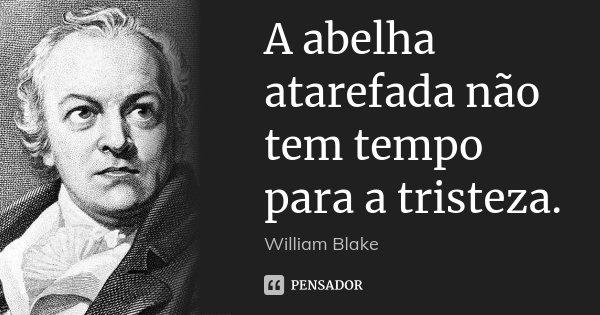 A abelha atarefada não tem tempo para a tristeza.... Frase de William Blake.
