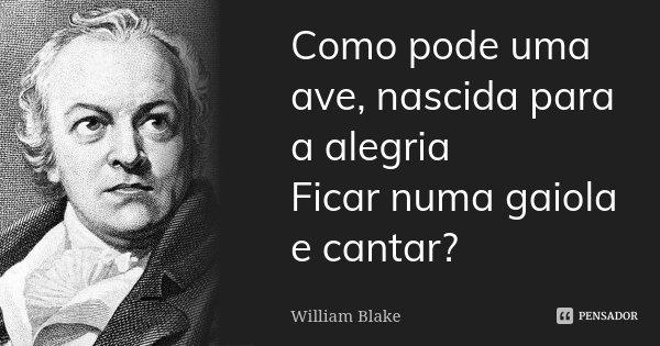 Como pode uma ave, nascida para a alegria Ficar numa gaiola e cantar?... Frase de William Blake.