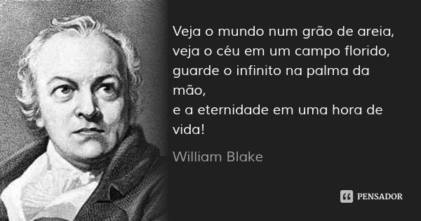 Veja o mundo num grão de areia, veja o céu em um campo florido, guarde o infinito na palma da mão, e a eternidade em uma hora de vida!... Frase de William Blake.