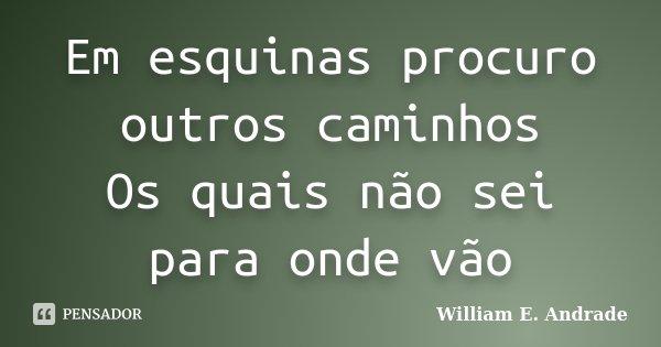 Em esquinas procuro outros caminhos Os quais não sei para onde vão... Frase de William E. Andrade.