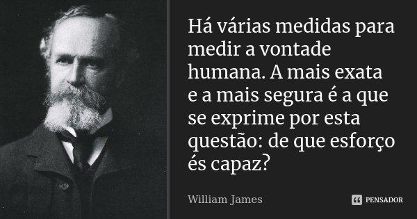 Há várias medidas para medir a vontade humana. A mais exata e a mais segura é a que se exprime por esta questão: de que esforço és capaz?... Frase de William James.