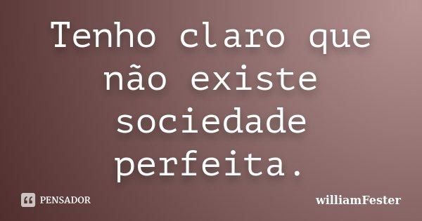 Tenho claro que não existe sociedade perfeita.... Frase de williamFester.