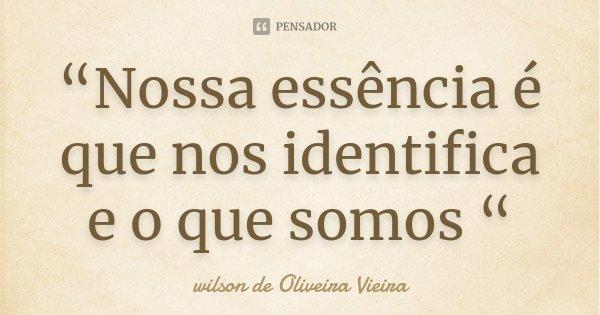 """""""Nossa essência é que nos identifica e o que somos """"... Frase de wilson de Oliveira Vieira."""