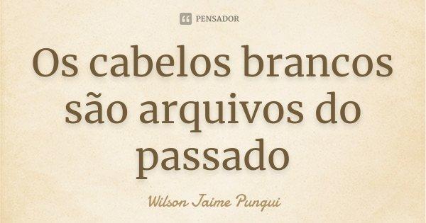 Os cabelos brancos são arquivos do passado... Frase de Wilson Jaime Pungui.