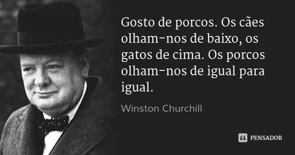 Gosto de porcos. Os cães olham-nos de baixo, os gatos de cima. Os porcos olham-nos de igual para igual.... Frase de Winston Churchill.