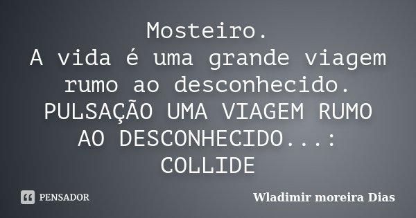 Mosteiro. A vida é uma grande viagem... Wladimir Moreira Dias