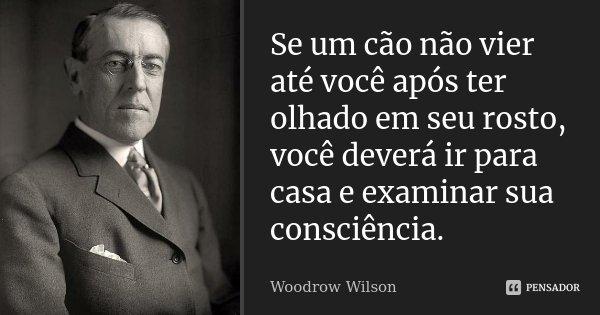 Se um cão não vier até você após ter olhado em seu rosto, você deverá ir para casa e examinar sua consciência... Frase de Woodrow Wilson.