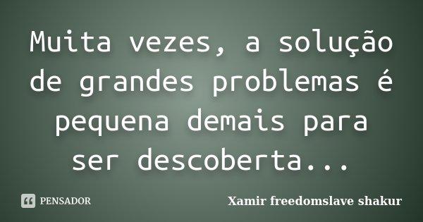 Muita vezes, a solução de grandes problemas é pequena demais para ser descoberta...... Frase de Xamir Freedomslave Shakur.
