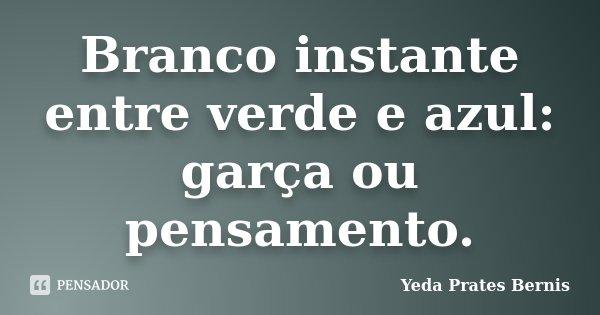 Branco instante entre verde e azul: garça ou pensamento.... Frase de Yeda Prates Bernis.