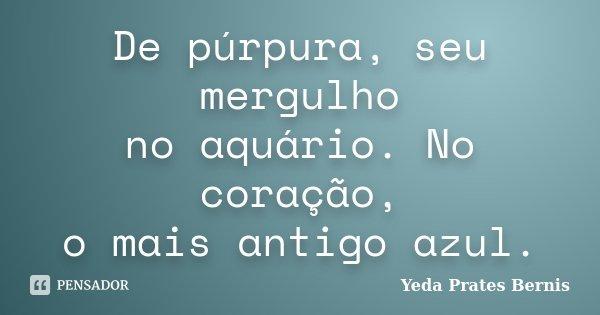 De púrpura, seu mergulho no aquário. No coração, o mais antigo azul.... Frase de Yeda Prates Bernis.